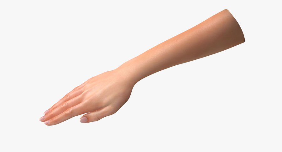 Female Arm A (Pose C Textured) royalty-free 3d model - Preview no. 3