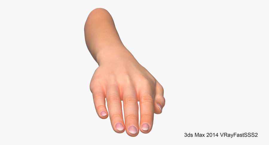 Female Arm A (Pose C Textured) royalty-free 3d model - Preview no. 6