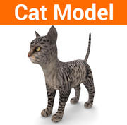 schattige kat model laag poly 3d model