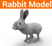 modelo de conejo de baja poli modelo 3d