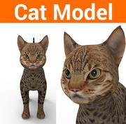 ładny kot tekstury 3d model