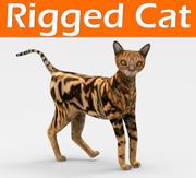 gato manipulado 3d model