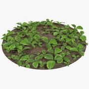 Hierba en el suelo modelo 3d