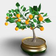 Апельсиновое дерево (бонсай) 3d model