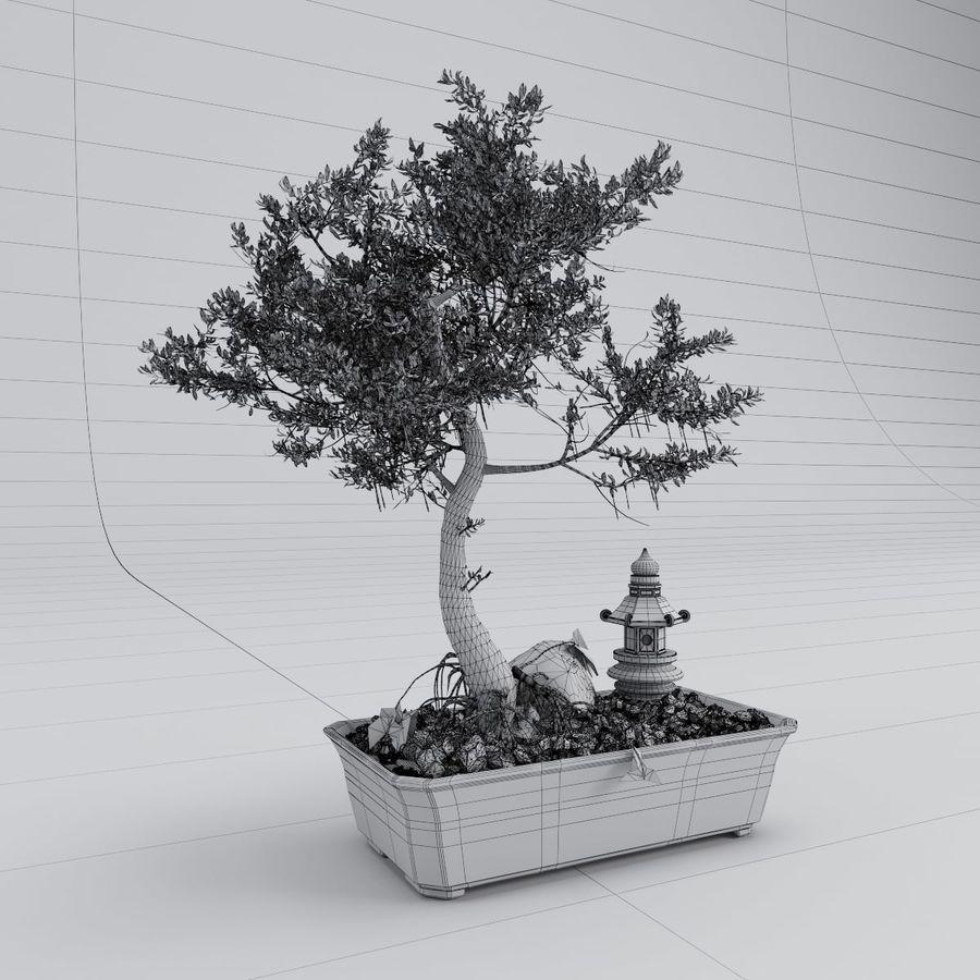 盆栽 royalty-free 3d model - Preview no. 5