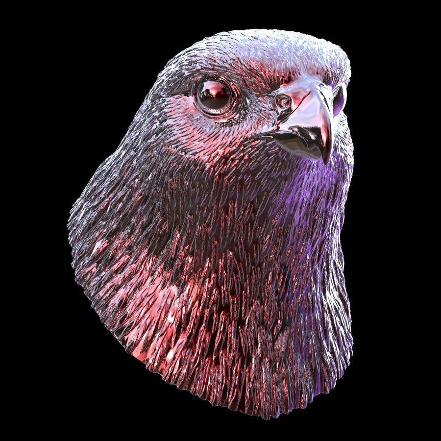 falcon head royalty-free 3d model - Preview no. 9