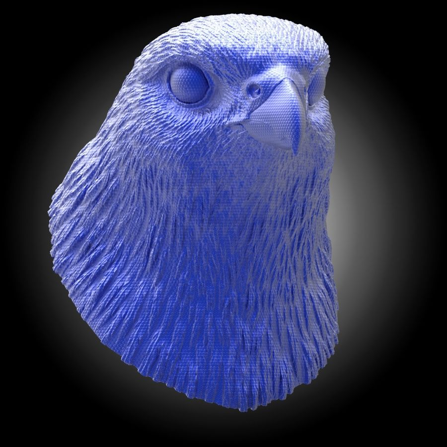 falcon head royalty-free 3d model - Preview no. 5