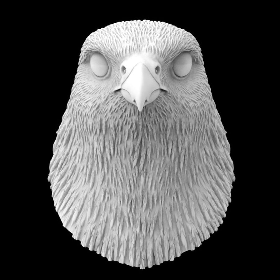 falcon head royalty-free 3d model - Preview no. 4