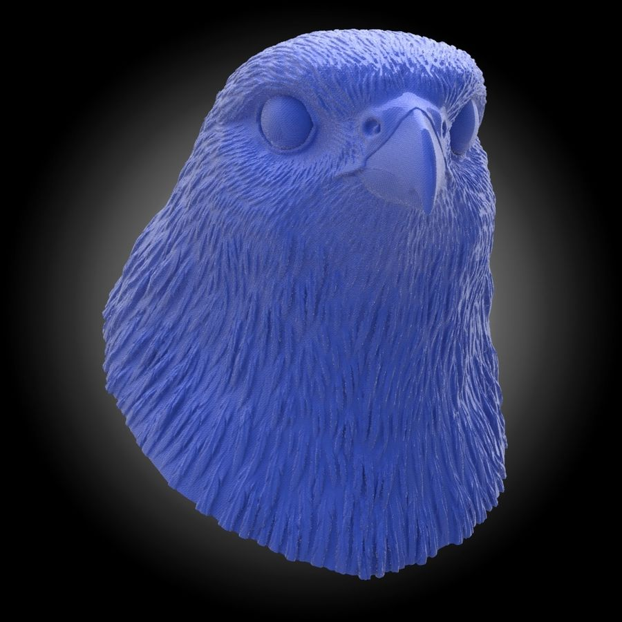 falcon head royalty-free 3d model - Preview no. 7