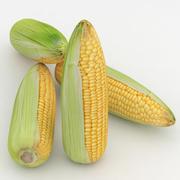 Majs för vegetabilisk majs 3d model