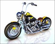 Gang Bike 3d model