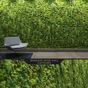 无缝的苔藓墙 3d model