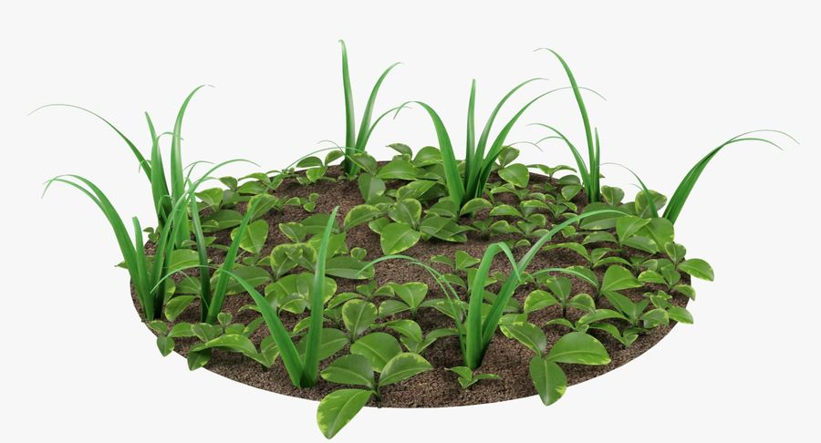 Mezcla de hierba en el suelo royalty-free modelo 3d - Preview no. 6