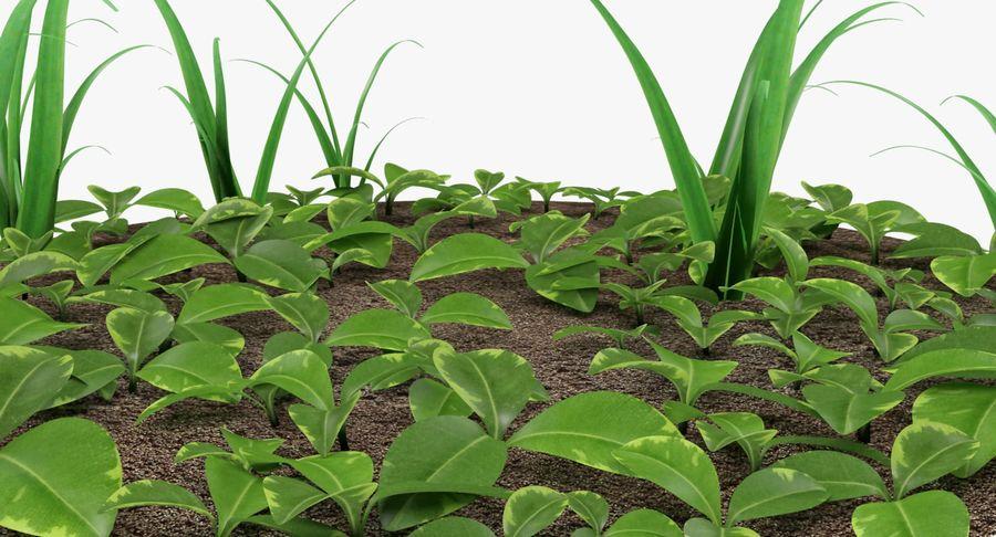 Mezcla de hierba en el suelo royalty-free modelo 3d - Preview no. 9