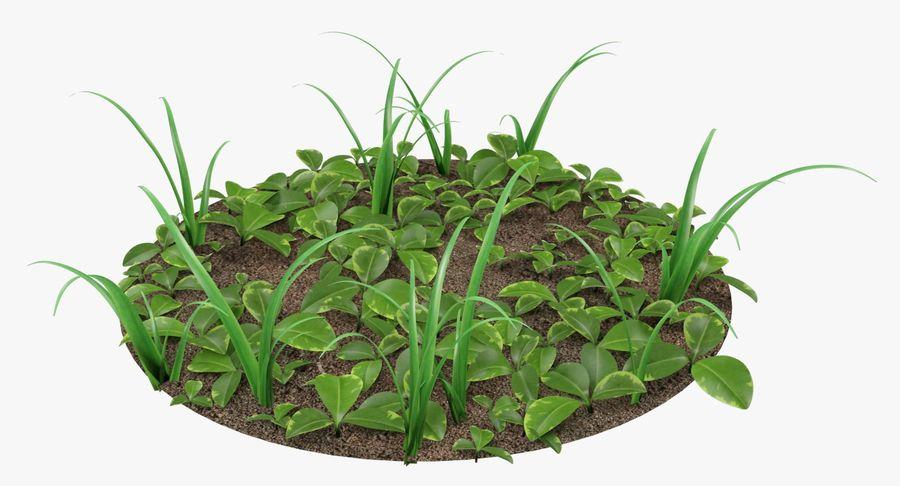 Mezcla de hierba en el suelo royalty-free modelo 3d - Preview no. 5