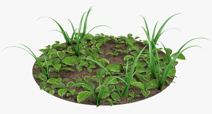 Mezcla de hierba en el suelo royalty-free modelo 3d - Preview no. 4
