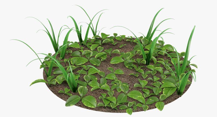 Mezcla de hierba en el suelo royalty-free modelo 3d - Preview no. 7