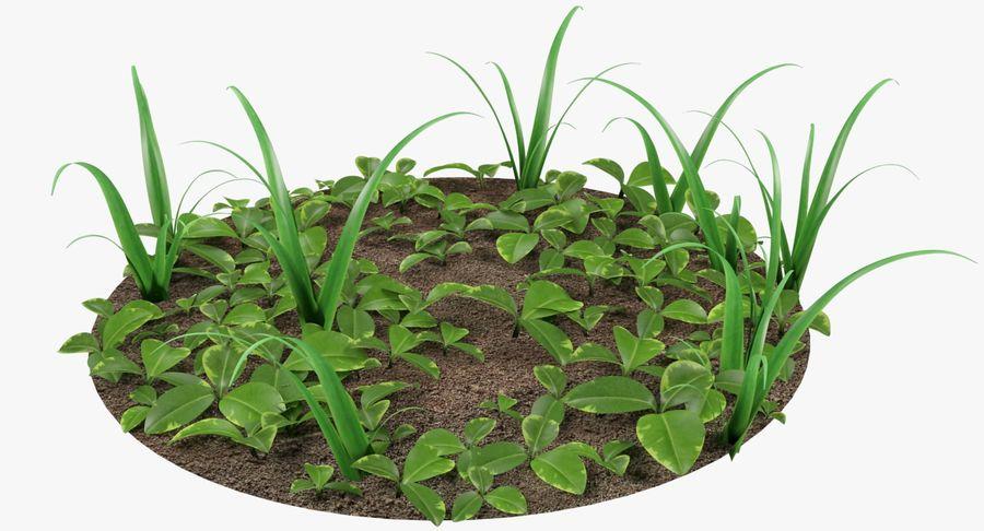 Mezcla de hierba en el suelo royalty-free modelo 3d - Preview no. 2