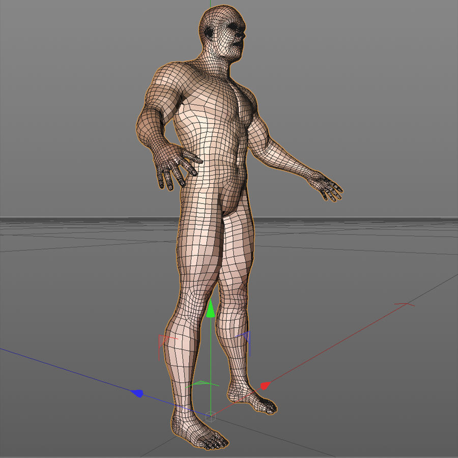 corpo maschile royalty-free 3d model - Preview no. 7