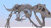 ティラノサウルスレックススケルトン(+ウォークサイクル) 3d model