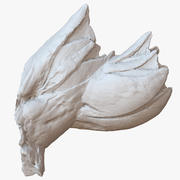 Pourpre Barnacle Sea Shell 1M Scan 3d model