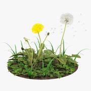 Dandelions and Grass 3d model