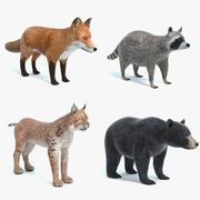 动物套装2 3d model