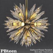 PBteen-星爆花吊坠 3d model