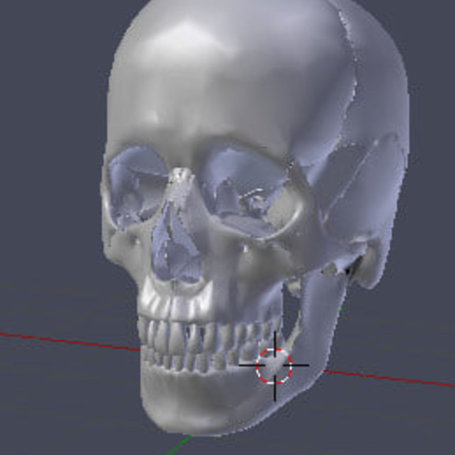 Menselijke schedel royalty-free 3d model - Preview no. 1