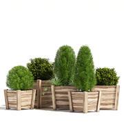 Plantadores de madeira 3d model