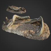 3D escaneado naturaleza bosque cosas 005 modelo 3d