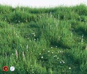 잔디 세트 3d model