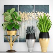 plantas de luxo coleção 3d model