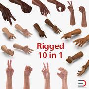 Opgezette Man Hands-collectie 3d model