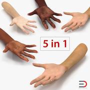 Коллекция 3D-моделей женских рук 3d model