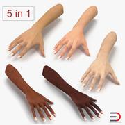 Коллекция женских рук 3D 3d model
