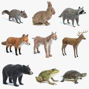 Zestaw zwierząt 4 3d model