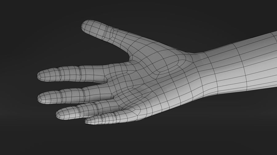 Realistic Hand-Rigged royalty-free 3d model - Preview no. 10