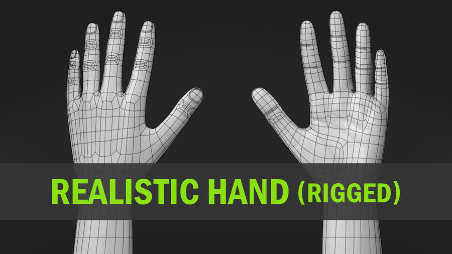 Realistic Hand-Rigged royalty-free 3d model - Preview no. 1