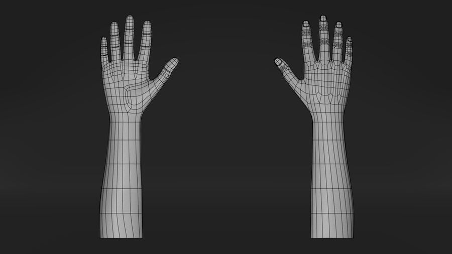 Realistic Hand-Rigged royalty-free 3d model - Preview no. 3