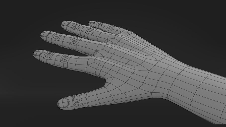 Realistic Hand-Rigged royalty-free 3d model - Preview no. 11