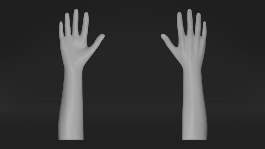 Realistic Hand-Rigged royalty-free 3d model - Preview no. 2