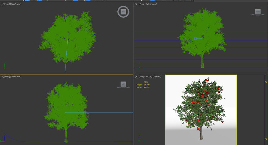 malus 3.7 meter apple tree royalty-free 3d model - Preview no. 7