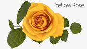 Gül sarı 3d model