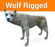 sfałszowany wilk 3d model