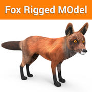 Fox Rigged 3d model