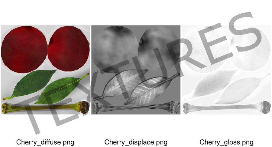 Cherry Fruit royalty-free 3d model - Preview no. 9