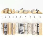 Set of birch firewood 3d model