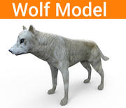 狼低聚 3d model