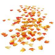 akçaağaç yaprakları 3d model